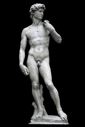 2007BM5740_michelangelo_david_plaster_cast_290x435