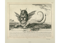 Maquart Fidel Dominikus Wocher, Harpie Monstre Amphibie Vivant, 1784, courtesy of Images of the French Revolution from Stanford Libraries.